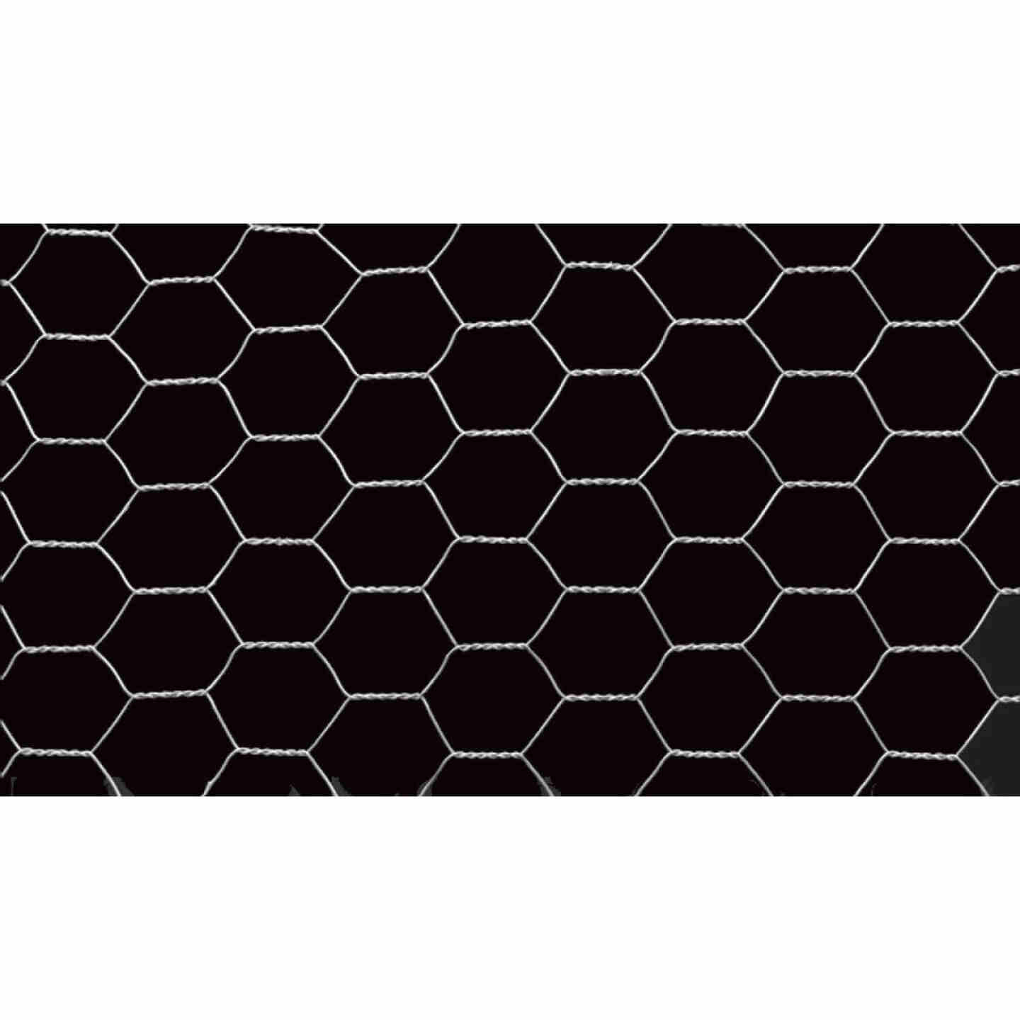 Do it 2 In. x 48 In. H. x 25 Ft. L. Hexagonal Wire Poultry Netting Image 3